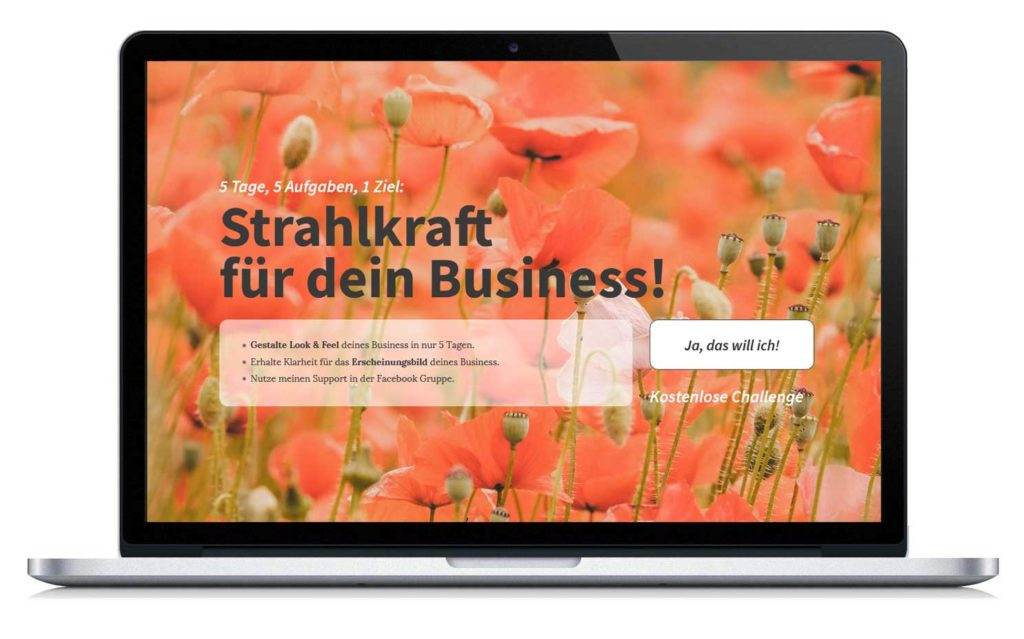 5-Tage Online Workshop: Wir erstellen ein Stimmungsboard für Look & Feel deines Business