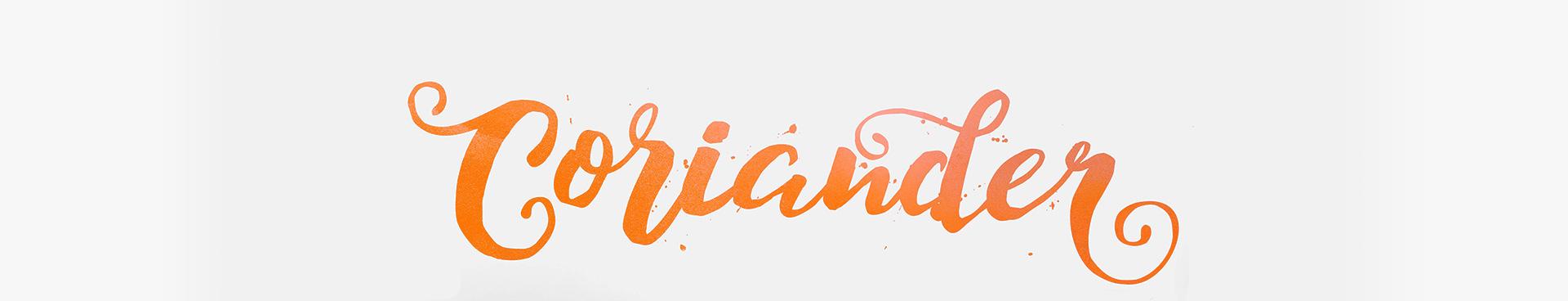 Logo-Design kalligrafisch